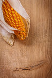 Ear of ripe corn on wooden board very close up Stock Photography