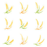 Ear spike logo badge icon wheat isolated vector. Stock Photo