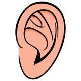 Ear Royalty Free Stock Photo