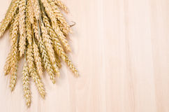 Ear of wheat Royalty Free Stock Photo