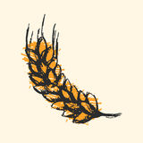 Ear wheat craft sketch  vector. Royalty Free Stock Image