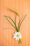 Ear Wheat With Chamomile And Grass Stock Photography