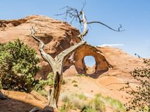 Ear of the Wind, Restricted Area, Monument Valley Stock Image