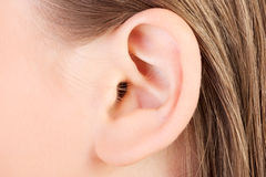 Ear Stock Photos