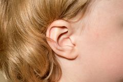 The ear of a young girl royalty free stock photography