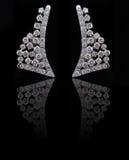 Earings del diamante con la reflexión Imagen de archivo libre de regalías