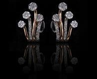 Earings del diamante con la reflexión Fotos de archivo