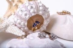 Earings e anéis do diamante com escudos Foto de Stock