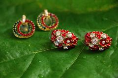 Earings rosso & verde Immagine Stock