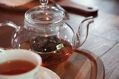 Earl Grey tea in glass tea pot on wood plate with white cup. royalty free stock photo