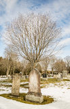 Early american gravestones and cemetery Stock Photo
