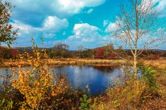 Early autum scenery at Jingpo lake world geological park. Every year from mid-September to early October is the optimal period for appreciating autum scene in Stock Photography