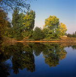 Early autumn. Royalty Free Stock Photography