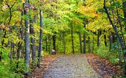Early Autumn Stock Photos