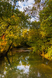 Early autumn color along a creek in rural Adams County, Pennsylv Stock Images