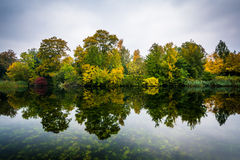 Early autumn color and a lake at Østre Anlæg, in Copenhagen, D Royalty Free Stock Photo