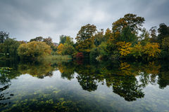 Early autumn color and a lake at Østre Anlæg, in Copenhagen, D Royalty Free Stock Images