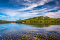 Early autumn color at North Pond, near Belfast, Maine. Royalty Free Stock Photography