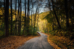 Early autumn color on a road in rural Baltimore County, Maryland Royalty Free Stock Photography