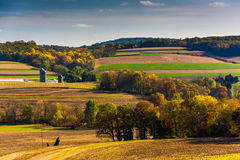 Early autumn color in the rolling hills of rural York County, Pe Royalty Free Stock Image