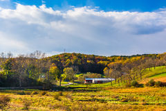 Early autumn color in rural York County, Pennsylvania. Royalty Free Stock Photo