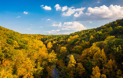 Early autumn color seen from the Prettyboy Dam in Baltimore Coun. Ty, Maryland Royalty Free Stock Photography