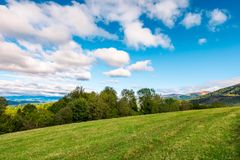 Early autumn countryside in mountains. Row of trees behind the grassy meadow. fluffy clouds on a blue sky stock photos