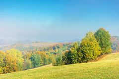 Early autumn countryside scenery in fog. Gy weather. beech trees in colorful foliage on the grassy hill. wonderful bright morning background in mountains royalty free stock photography