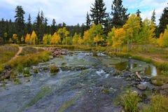 Early autumn at Duck Creek. Birch trees near a stream 4 3 Stock Photo