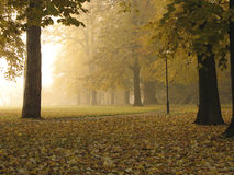 Early autumn foggy morning. In city park, Banja Luka, Republika Srpska, Bosnia Royalty Free Stock Images