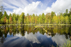 Early autumn. Landscape with reflection in the water. Stock Photography
