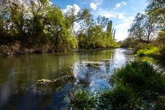 Early autumn landscape. Wild river flowing along the banks, densely overgrown with bushes and trees. Royalty Free Stock Images