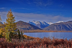 Early autumn morning on Jack London's lake. Kolyma Stock Image