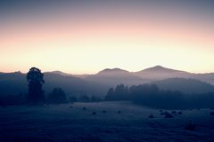 Early autumn  morning in meadows, hoarfrost on grass in  foggy valley Stock Image