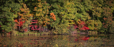 Early autumn panorama stock image