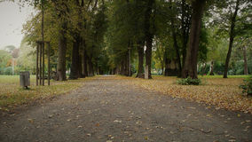 Early autumn in the park Royalty Free Stock Image