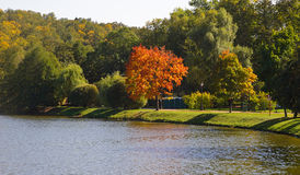 Early autumn in park Tsaritsyno (Moscow). Royalty Free Stock Photo