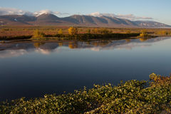 Early autumn in the Polar Urals. Sob River. Russia royalty free stock image