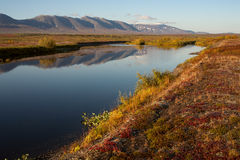 Early autumn in the Polar Urals. Sob River. Russia stock images