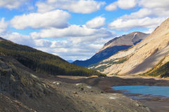 Early autumn in the Rocky Mountains of Canada. Brilliant turquoise Bow Lake and the picturesque triangular mountain. Early autumn in the Rocky Mountains of royalty free stock photo