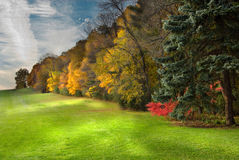 Early Autumn scene. An early Autumn scene of trees along a field of green grass Royalty Free Stock Photos
