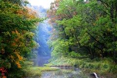 Early autumn scene Royalty Free Stock Image