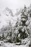 Early autumn snow in Dolomite Mountains Royalty Free Stock Photos