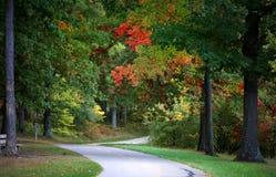 Early autumn time Stock Photos