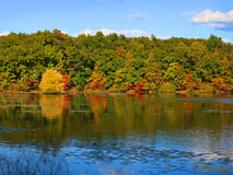 Early autumn time in Michigan Royalty Free Stock Image