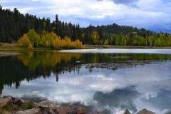 Early autumn. Yellow trees and sky water reflection Stock Images