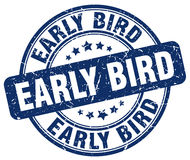 Early bird blue stamp. Early bird blue grunge stamp Royalty Free Stock Image