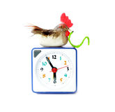 Early bird catches gets the worm proverb. Representing alarm clock on 6 am with bird and maggot in neb royalty free stock photos