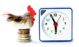 Early bird catches gets the worm proverb Stock Photography