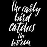 The early bird catches the worm. Hand drawn lettering proverb. Vector typography design. Handwritten inscription. Royalty Free Stock Photos
